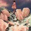 rose_quartz_hoeckel