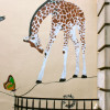 safari-urbain-street-art-mosko-et-associc3a9s1