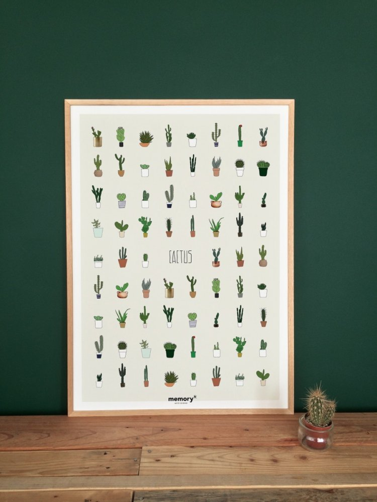 CACTUS-lille-memory-affiches