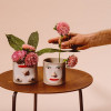 ceramique-group-partner-brooklyn-07