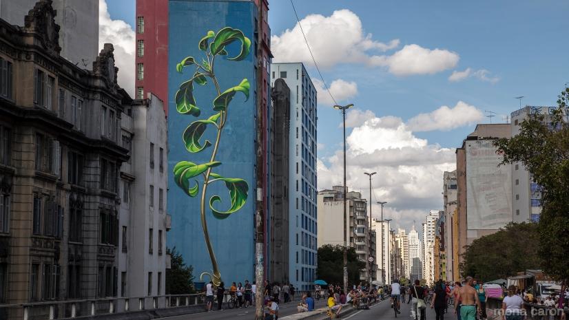 Minhocao_SaoPaulo_mural-by-Mona-Caron_3652-L_0
